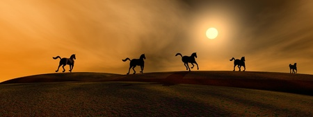 Shadows of running horses by sunset Stock Photo