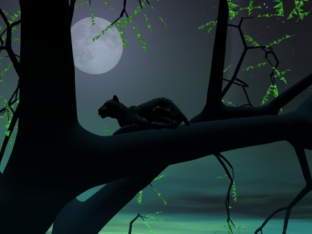 Silhouette view of panther sitting on the branch of a tree by green night with full moon Stock Photo - 15186153