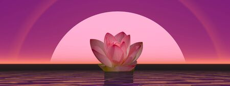 calmness: Pink lily flower on water in front of moon or sun with halos Stock Photo