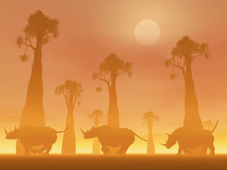 foggy: Three rhinoceros running between baobab trees in the savannah by foggy sunset light Stock Photo