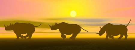 Three rhinoceros running in the savannah by sunset light photo