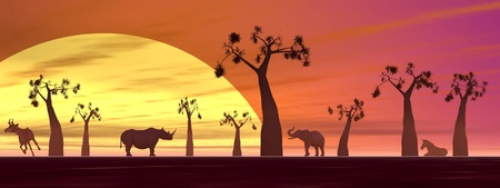 Shadows of animals in the savannah next to baobabs by sunset photo