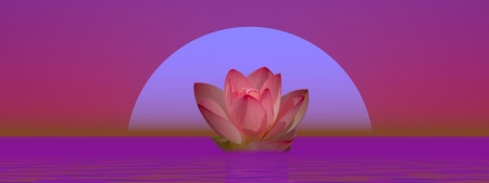 Pink lily flower on water in front of moon or sun photo