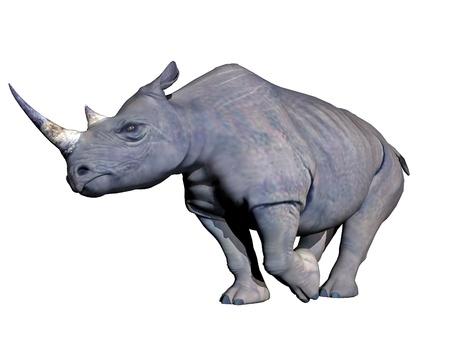 Grey rhinoceros charging in white background photo