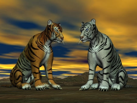 Two tigers, orange and white, sitting face to face in the desert with cloudy sky photo