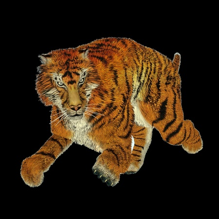 Big beautiful tiger running in black background Stock Photo