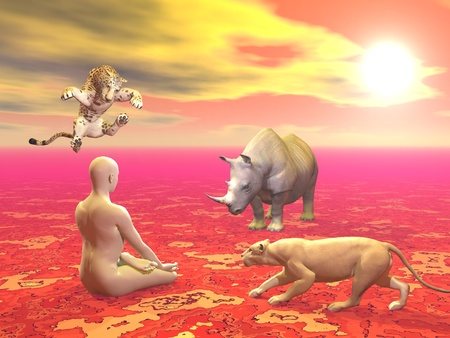Peaceful man sitting in lotus position in front of agressive wild animals by sunset photo
