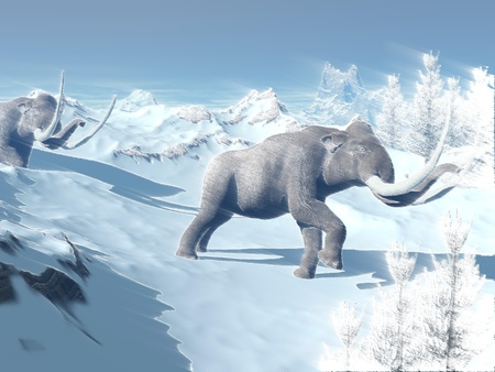 black mammoth: Two big mammoths walking slowly in the snowy mountain against the wind Stock Photo