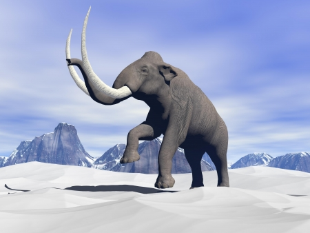 Big mammoth walking slowly in the snowy mountain photo