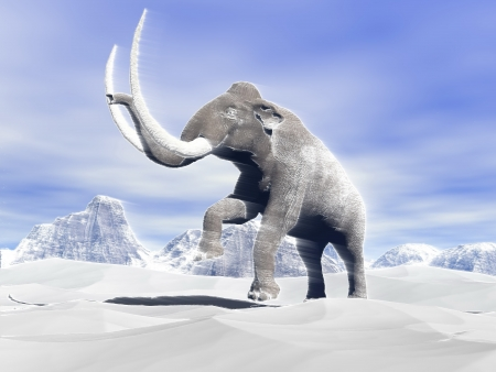 Big mammoth walking slowly in the snowy mountain against the wind photo