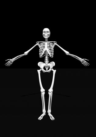 arms wide: Braccia spalancate scheletro bianco a sfondo nero