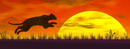Tiger jumping to the sun in wild landscape by red sunset Stock Photo - 16250667