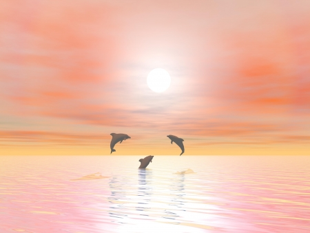 Shadow of three small dolphins jumping over the ocean by sunset photo