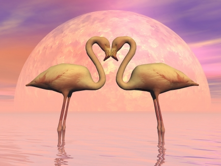 Couple of flamingos face to face as lovers in front of the moon photo