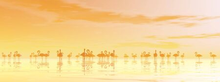 Flock of flamingos standing peacefully in the water by orange sunset photo