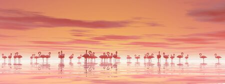 Flock of flamingos standing peacefully in the water by cloudy sunset photo