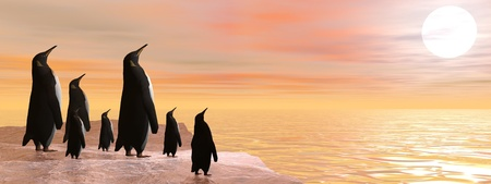 Penguin family sharing the beauty of sunset upon the ocean Stock Photo - 16464661