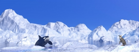 antarctic: Penguin and orca meeting among icebergs by beautiful day