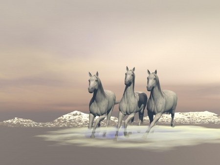 irish landscape: Three beautiful white horses gallopping in the nature by cloudy weather Stock Photo