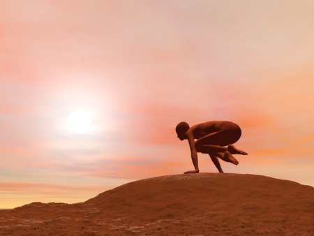 Young woman doing scale pose, tolasana, while practicing yoga outside in front of sunset Stock Photo - 17256675