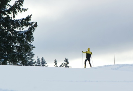 Cross country man sking in the mountain next to a fir tree by winter in Jura, Switzerland photo