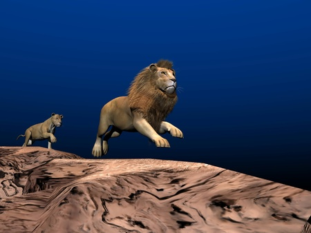 Lion and lioness running in the desert by night photo