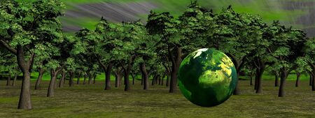 Small earth in front of deep green forest photo