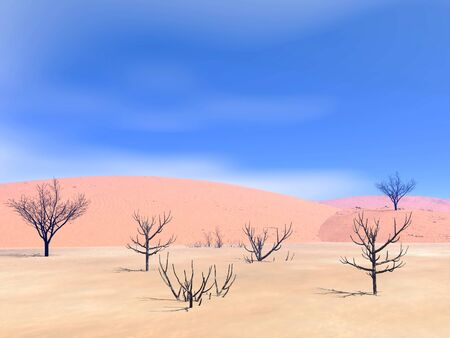 Dead trees in a sand desert by hot day photo