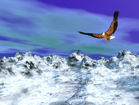 Beautiful eagle flying over the snowy mountain by cloudy winter day photo