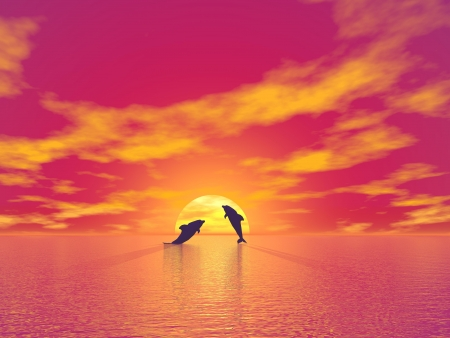 Shadow of two small dolphins jumping in the ocean toward the sun by red sunset  photo