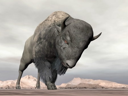 attacking: Bison cabeza listo para cargar, de pie en el desierto Foto de archivo