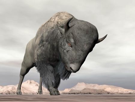 Bison tête en bas prêt à charger, debout dans le désert Banque d'images