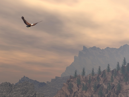 sky rise: Eagle flying upon the moutain rocks and fir trees by cloudy day