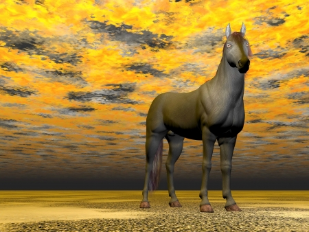 hypnose: Surrealistic horse with beautiful eyes standing in colorful background