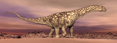 Big argentinosaurus dinosaur walking quietly in the desert by dawn photo
