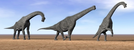 enormous: Three brachiosaurus dinosaurs standing in the desert by daylight Stock Photo
