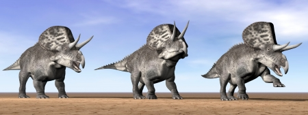 Three zuniceratops dinosaurs standing in the desert by daylight