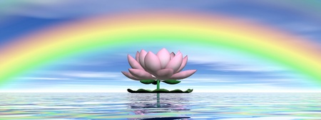 Beautiful pink lotus flower on water and under rainbow and cloudy blue sky photo