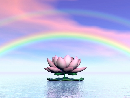 Beautiful pink lotus flower on water and under rainbow and cloudy sunset sky