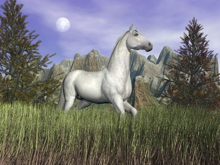 Beautiful white horse standing in long grass in front of a mountain and next to fir trees by cloudy night photo