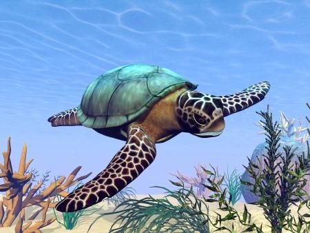 Beautiful sea turtle swimming in the sea among plants