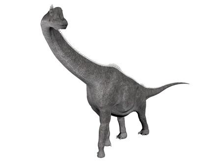 brachiosaurus: Brachiosaurus dinosaur walking in white background Stock Photo