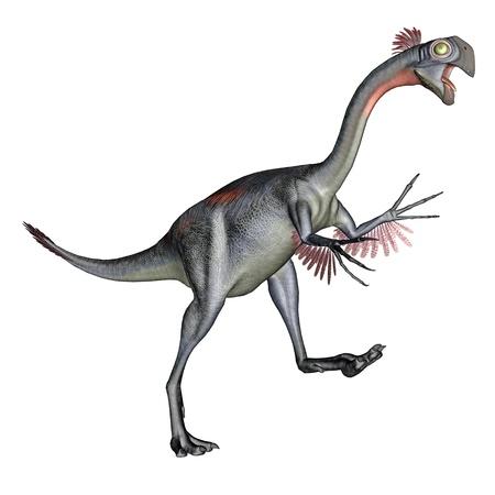 prehistorical: Gigantoraptor dinosaur walking quietly in white background