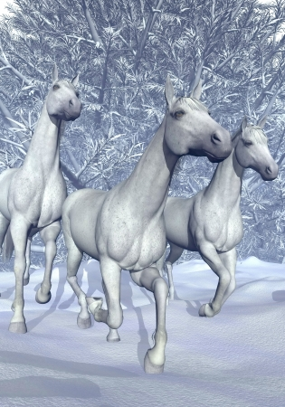 Beautiful white horses galloping in front of the woods by winter photo