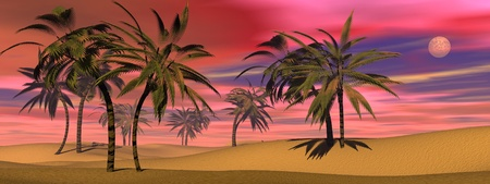 Many palm trees in the desert sand by colorful sunset with full moon photo