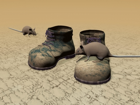 muddy track: Old brown boots on the ground with rats around