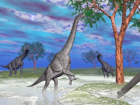 One brachiosaurus dinosaurs eating next to others in nature by colorful day
