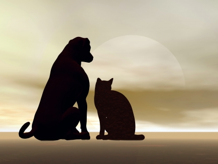 cat and dog silhouettes sitting peacefully in front of moonlight photo