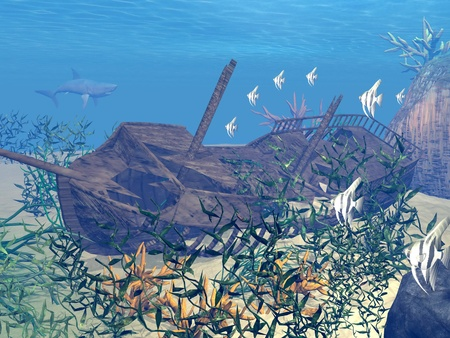 Shipwreck underwater surrounded with fishes, plants and coral