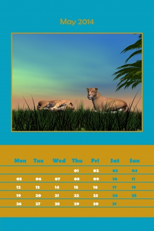Colorful english calendar for may 2014 - lionness resting scene, 3D render photo
